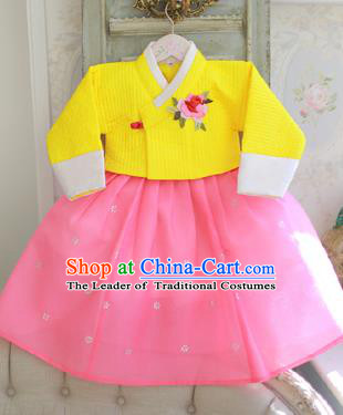 Asian Korean National Handmade Formal Occasions Clothing Embroidered Yellow Blouse and Pink Dress Palace Hanbok Costume for Kids