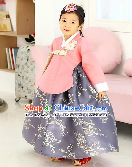 Korean National Handmade Formal Occasions Girls Hanbok Costume Embroidered Pink Blouse and Grey Dress for Kids