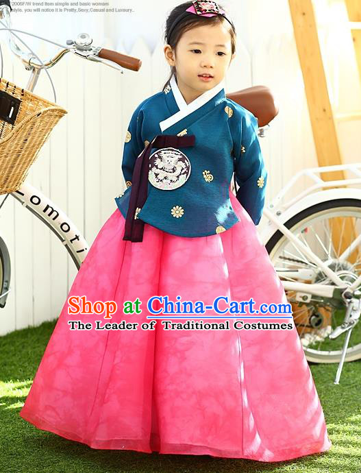 Korean National Handmade Formal Occasions Girls Hanbok Costume Embroidered Blue Blouse and Pink Dress for Kids