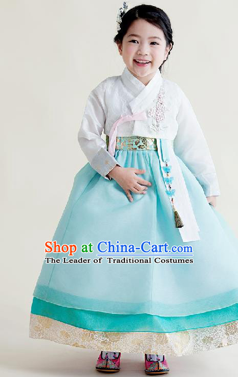 Asian Korean National Handmade Formal Occasions Wedding Girls Clothing Embroidered White Blouse and Blue Dress Palace Hanbok Costume for Kids