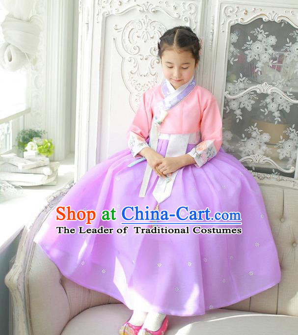Asian Korean National Handmade Formal Occasions Wedding Girls Clothing Embroidered Pink Blouse and Purple Dress Palace Hanbok Costume for Kids