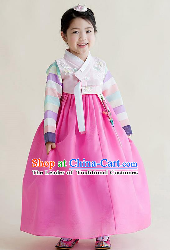 Asian Korean National Handmade Formal Occasions Wedding Girls Clothing Embroidered Pink Blouse and Dress Palace Hanbok Costume for Kids