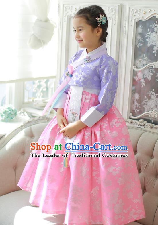 Asian Korean National Handmade Formal Occasions Wedding Girls Clothing Embroidered Purple Blouse and Pink Dress Palace Hanbok Costume for Kids