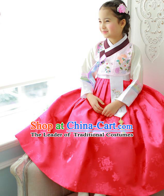 Asian Korean National Handmade Formal Occasions Wedding Girls Clothing Embroidered White Blouse and Red Dress Palace Hanbok Costume for Kids