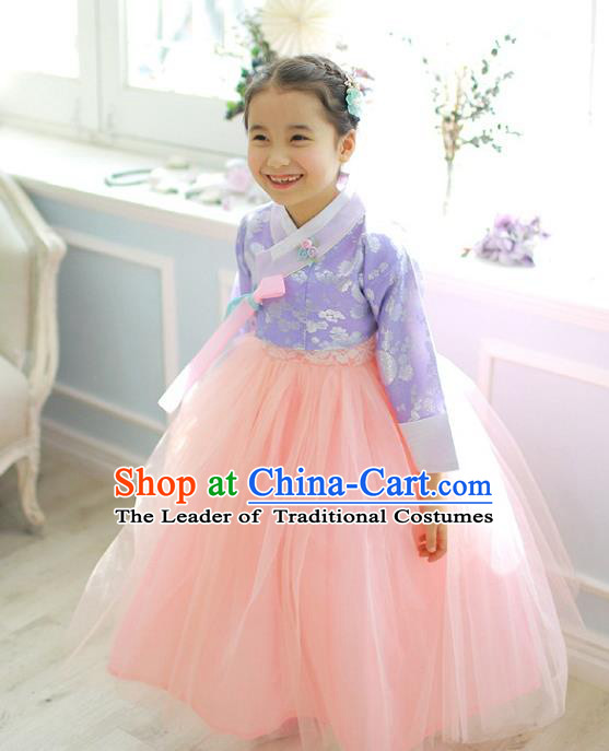 Asian Korean National Handmade Formal Occasions Wedding Girls Clothing Embroidered Purple Blouse and Pink Veil Dress Palace Hanbok Costume for Kids