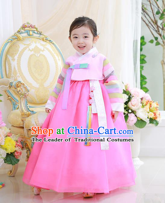 Asian Korean National Handmade Formal Occasions Wedding Girls Clothing Embroidered Blouse and Pink Dress Palace Hanbok Costume for Kids