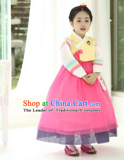 Asian Korean National Handmade Formal Occasions Wedding Girls Clothing Palace Hanbok Costume Embroidered Yellow Blouse and Pink Dress for Kids