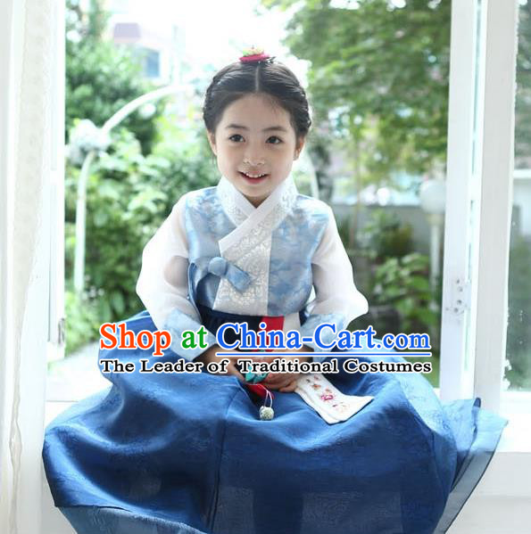 Asian Korean National Handmade Formal Occasions Wedding Girls Clothing Palace Hanbok Costume Embroidered Blue Blouse and Dress for Kids