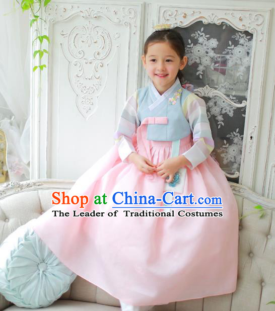 Traditional Korean National Handmade Formal Occasions Girls Clothing Palace Hanbok Costume Embroidered Blue Blouse and Pink Veil Dress for Kids