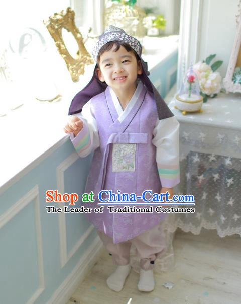 Asian Korean National Traditional Handmade Formal Occasions Boys Embroidery Purple Vest Hanbok Costume Complete Set for Kids
