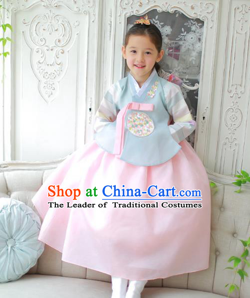 Traditional Korean National Handmade Formal Occasions Girls Clothing Palace Hanbok Costume Embroidered Blue Blouse and Pink Dress for Kids