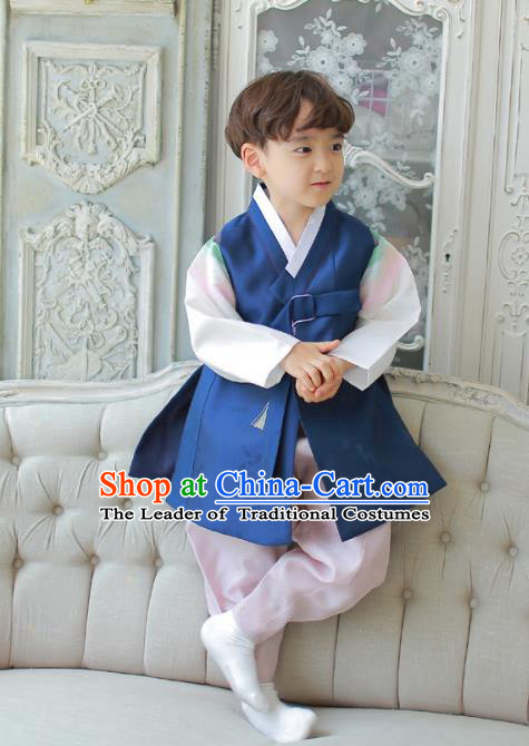 Traditional Asian Korean National Handmade Formal Occasions Boys Embroidery Deep Blue Vest Hanbok Costume Complete Set for Kids