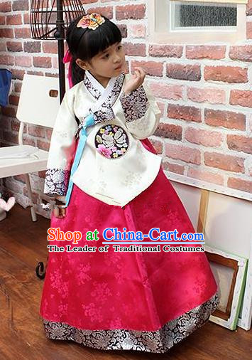 Traditional Korean Handmade Hanbok Embroidered Costume, Asian Korean Apparel Hanbok Embroidery Bride Clothing for Girls