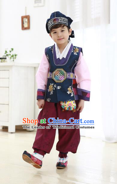 Traditional Korean Handmade Hanbok Embroidered Formal Occasions Blue Costume, Asian Korean Apparel Hanbok Clothing for Boys