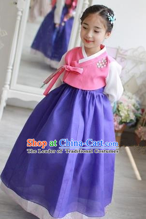 Traditional Korean Handmade Formal Occasions Embroidered Girls Wedding Costume Pink Blouse and Blue Dress Hanbok Clothing for Kids