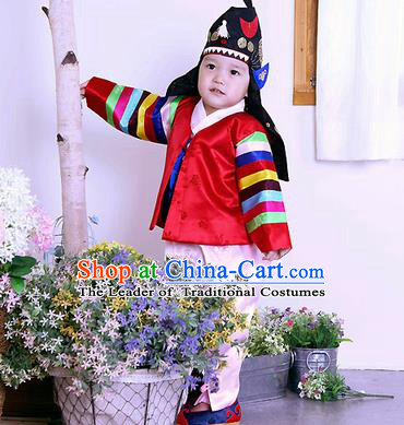 Traditional Korean Handmade Formal Occasions Embroidered Palace Prince Hanbok Red Clothing for Kids