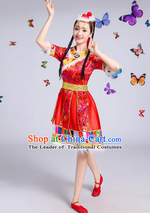 Traditional Chinese Mongol Nationality Dance Costume, Mongols Female Folk Dance Ethnic Pleated Skirt Minority Embroidery Clothing for Women