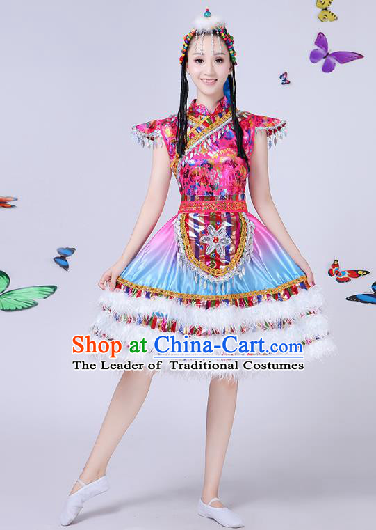Traditional Chinese Mongol Nationality Dance Costume, Chinese Mongolian Minority Folk Dance Embroidery Short Dress for Women