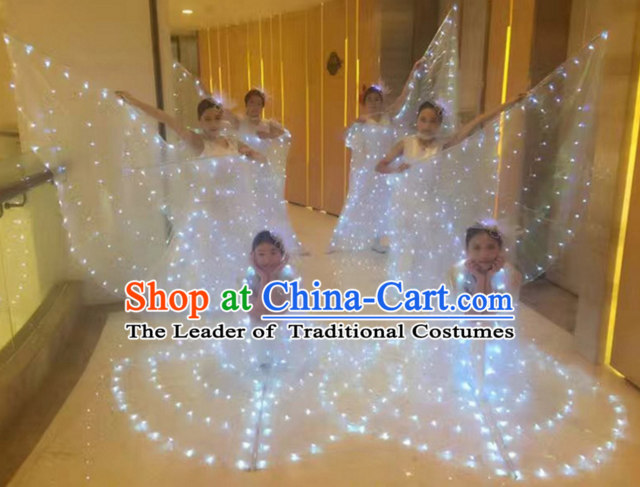 LED Dance Costumes Professional Dance LED Costumes Butterfly LED Lights Costume and Headgear Complete Set