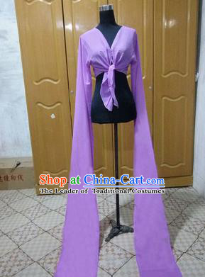 Traditional Chinese Long Sleeve Water Sleeve Dance Suit China Folk Dance Chiffon Long Purple Ribbon for Women