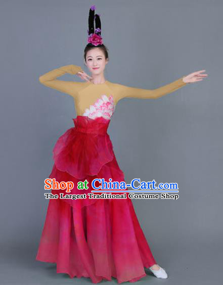 Chinese Traditional Classical Dance Costume Folk Dance Lotus Dance Red Dress for Women