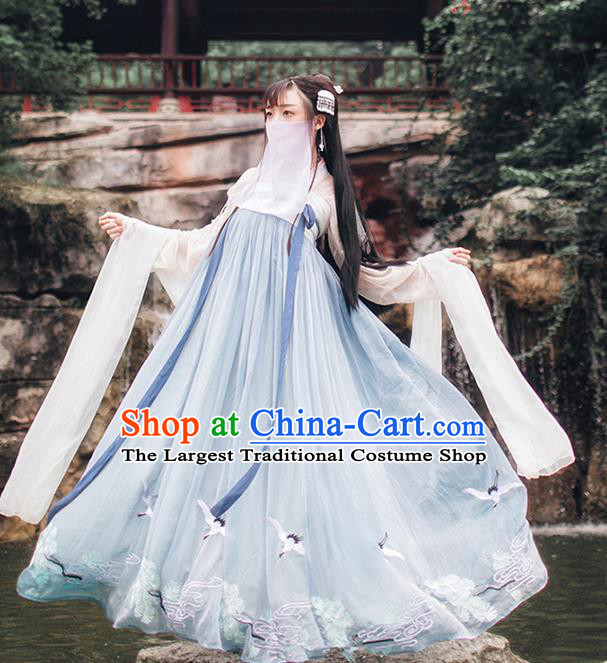 Chinese Ancient Peri Embroidered Costumes Tang Dynasty Palace Princess Hanfu Dress for Women