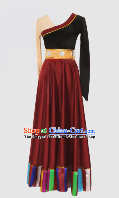 Chinese Tibetan Ethnic Minority Purplish Red Dress Traditional Zang Nationality Folk Dance Costume for Women