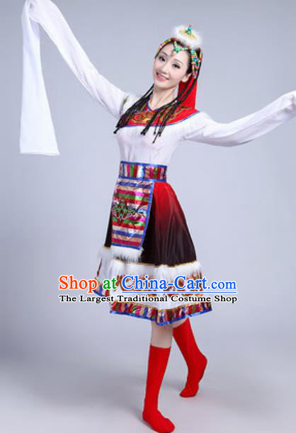 Traditional Chinese Zang Nationality Dance Costume Tibetan Ethnic Dress for Women