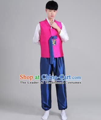 Asian Korean Palace Costumes Traditional Korean Bridegroom Rosy Hanbok Clothing for Men