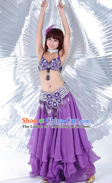 Indian Belly Dance Stage Performance Costume, India Oriental Dance Purple Dress for Women