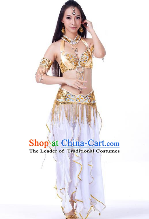 Traditional India Oriental Bollywood Dance Costume Indian Belly Dance Lotus Dress for Women