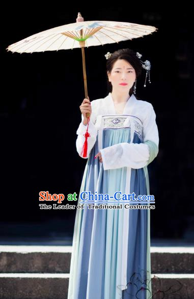 Chinese Ancient Palace Lady Blue Dress Tang Dynasty Princess Embroidered Costume for Women