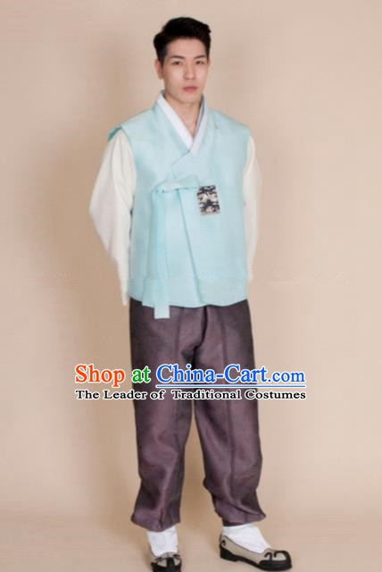 Traditional Korean Costumes Ancient Korean Bridegroom Hanbok Blue Vest and Purple Pants for Men