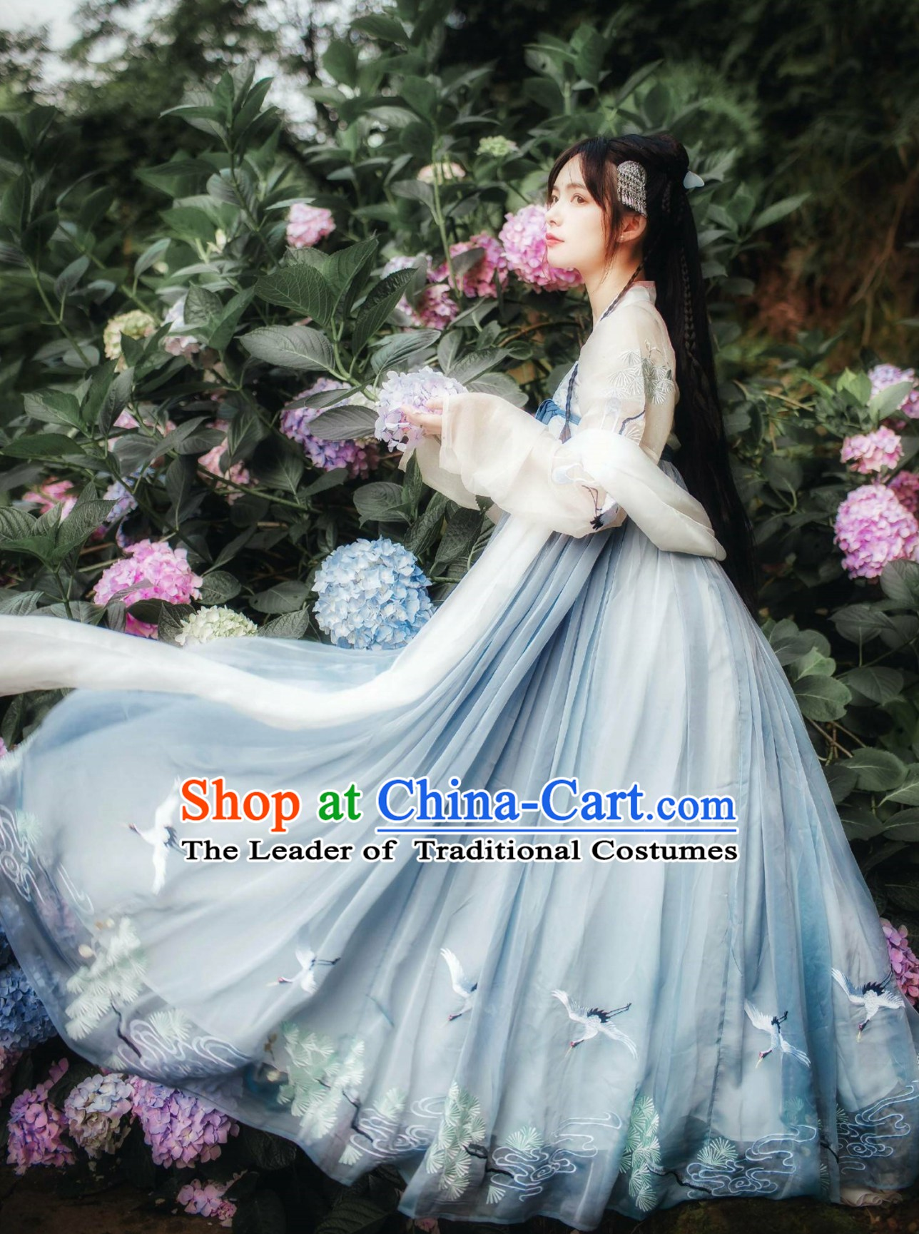 Chinese Classical Dancing Tang Dynasty Hanfu Clothing Complete Set for Women