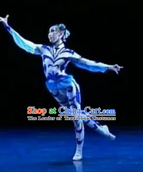Traditional Chinese Folk Dance Ballet Costume, China Classical Dance Dress Clothing for Women