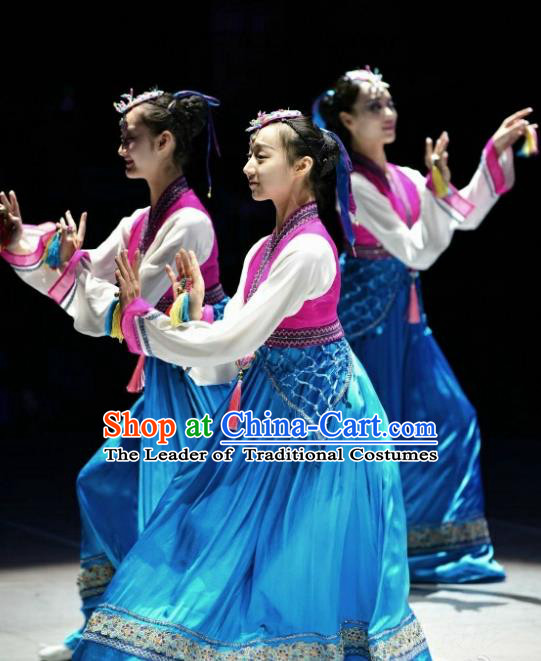 Traditional Chinese Classical Dance Costume, Folk Dance Minority Dance Clothing for Women