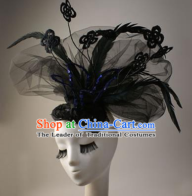Top Grade Catwalks Queen Feather Hair Accessories Halloween Baroque Royal Crown Stage Performance Modern Fancywork Headwear