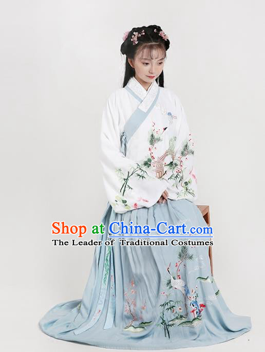 Chinese Ancient Ming Dynasty Princess Costumes Embroidered Hanfu Blouse and Skirt for Women