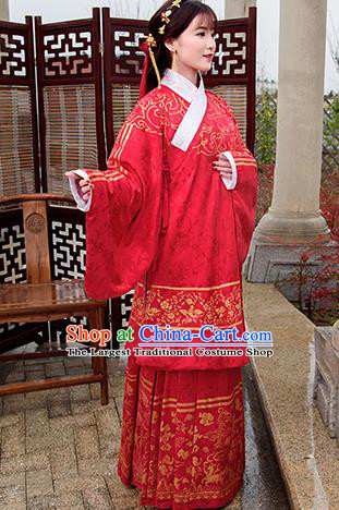 Traditional Chinese Ancient Ming Dynasty Palace Princess Costumes Red Cloak and Skirt for Women