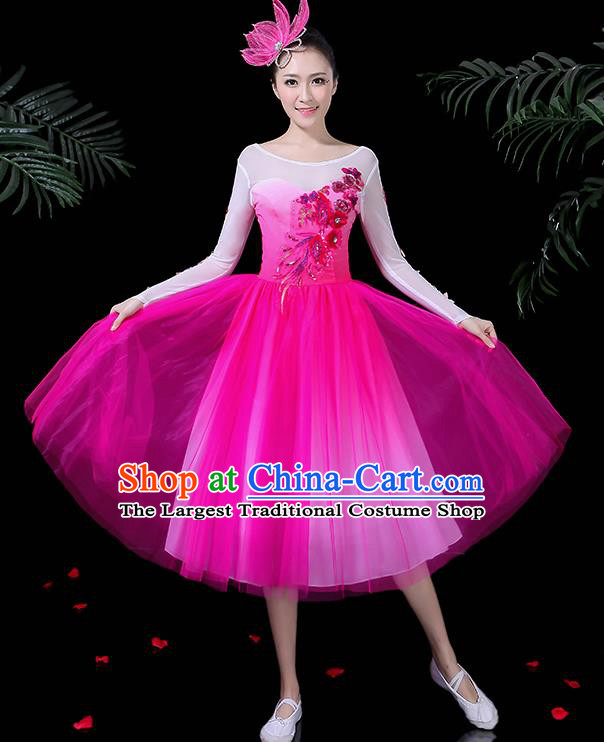 Professional Stage Performance Modern Dance Costume Chorus Rosy Dress for Women