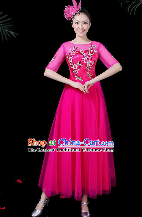 Professional Modern Dance Costume Stage Performance Chorus Rosy Veil Dress for Women