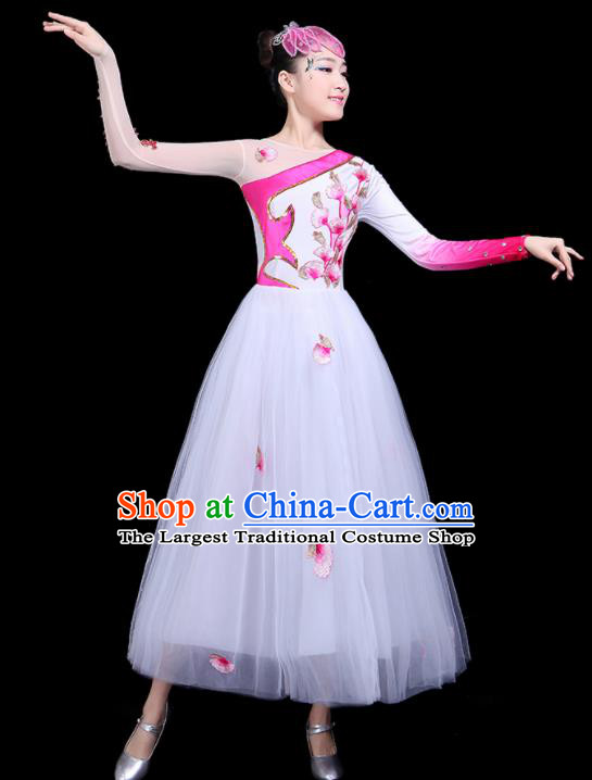 Professional Dance Modern Dance Costume Stage Performance Chorus White Veil Dress for Women