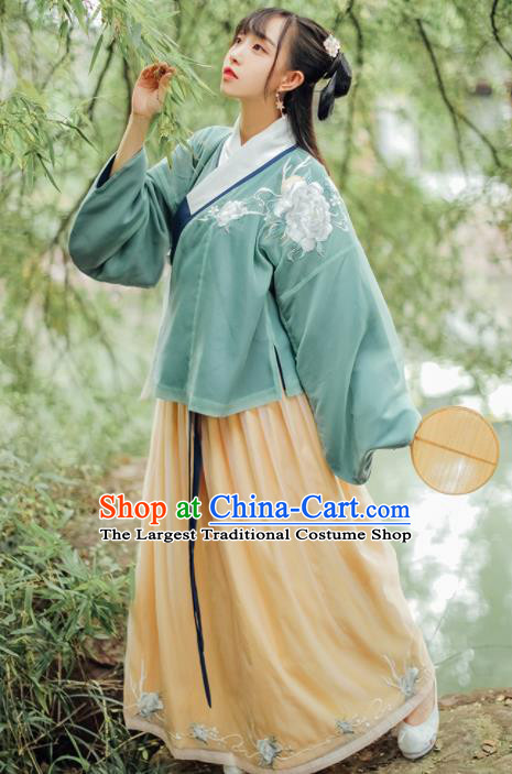 Traditional Chinese Ming Dynasty Female Embroidered Historical Costumes Ancient Princess Hanfu Dress for Women