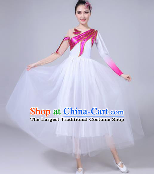 Top Grade Chorus Stage Show Costumes Group Dance Modern Dance White Veil Dress for Women