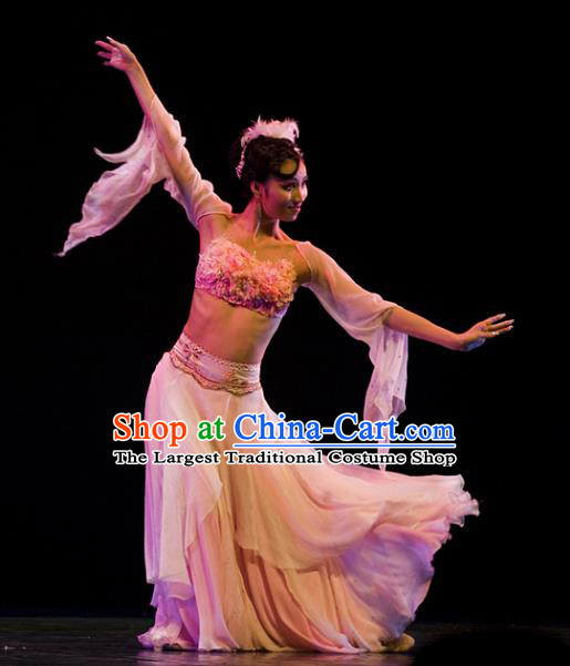 Chinese Traditional Classical Dance Group Dance Costumes Stage Performance Pink Dress for Women
