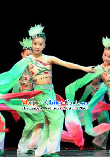 Traditional Chinese Classical Dance Green Costume Water Sleeve Dance Stage Show Dress for Women