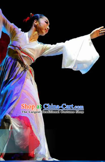 Traditional Chinese Korean Nationality Dance Dress Ethnic Dance Stage Show Costume for Women