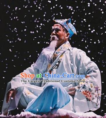 Chinese Dharma Legends in Famen Temple Ancient Ming Dynasty Old Scholar Stage Performance Costume for Men