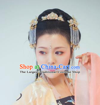 Traditional Chinese Classical Golden Tassel Hair Crown Hairpins Ancient Princess Hanfu Hair Accessories for Women