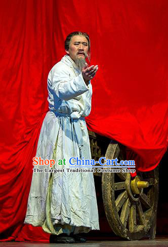 Chinese Drama Fu Sheng Ancient Qin Dynasty Old Scholar White Clothing Stage Performance Dance Costume for Men